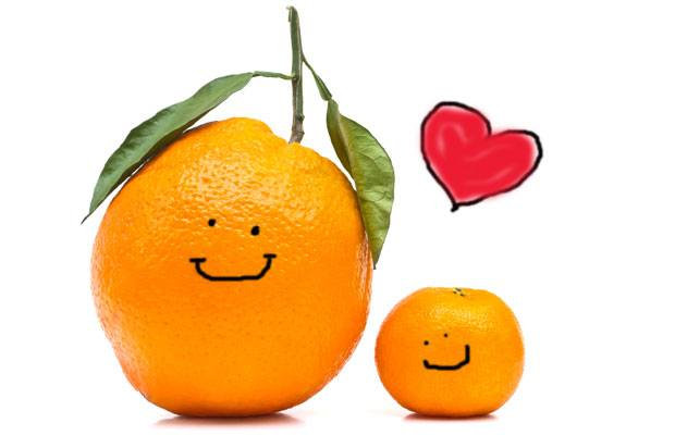 oranges in love