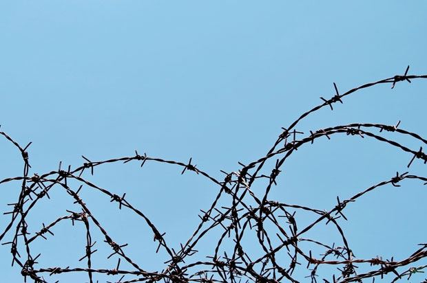 barbed wire blue sky