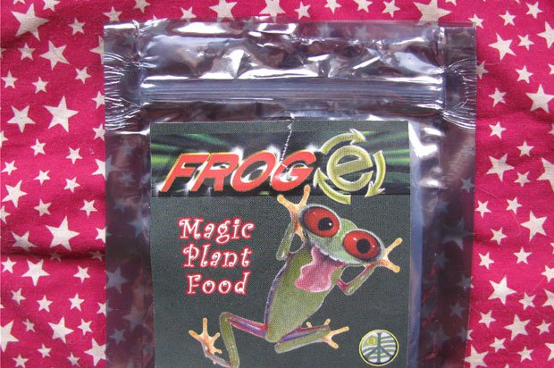 Packet with label 'magic plant food' called frog-e