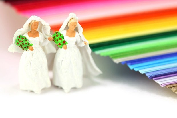 2 brides (like the ones usually on top of a cake) next to colours representing gay pride