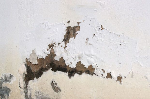 damp and cracks in wall
